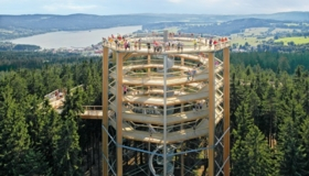 First Bohemian Tree Top Trail - Lipno